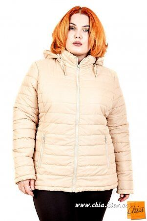 МОДА ОПТ: Куртка В5060 - фото 1
