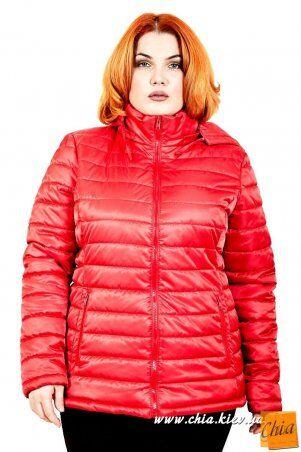 МОДА ОПТ: Куртка В5060 - фото 2