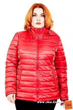 МОДА ОПТ: Куртка В5060 - фото 8
