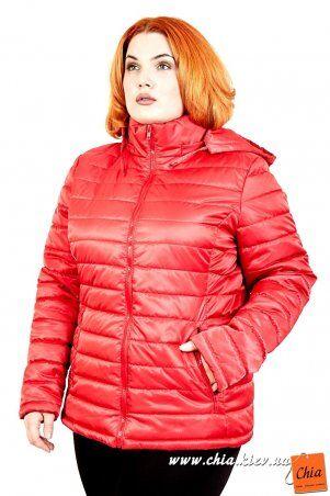 МОДА ОПТ: Куртка В5060 - фото 9