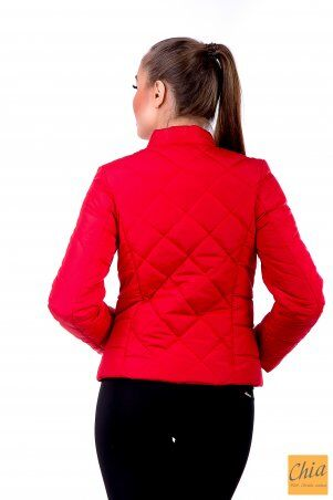 МОДА ОПТ: Куртка-1 33 - фото 20