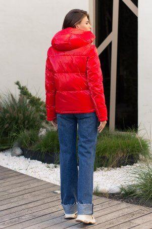 Glem: Куртка 287 14-красный p73718 - фото 5